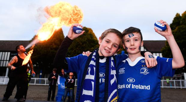 Harry Tritschler, left, and Darren Owens, from Curraghwood, Co. Wexford, show their colours at the RDS last weekend. RAMSEY CARDY/SPORTSFILE