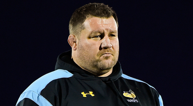 Wasps Dai Young is refusing to read anything into results. Photo: Sportsfile