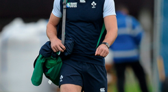 Tommy Bowe: 'I know that the Romania game is going to be a big opportunity for me to put my hand up because the next two weeks are obviously huge'