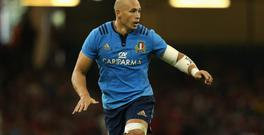 Italy's Sergio Parisse. Photo: Getty Images