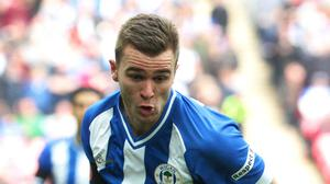 Callum McManaman, pictured, is a top target for West Brom head coach Tony Pulis