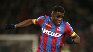 Wilfried Zaha, pictured, was 'buzzing' after helping Alan Pardew to his first win as new Palace boss