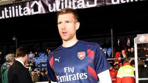 Per Mertesacker is in line for his first Arsenal appearance of the season on Saturday