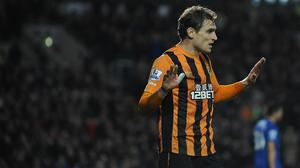 Nikica Jelavic faces up to six weeks on the sidelines