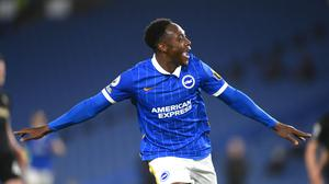 Danny Welbeck celebrates his goal for Brighton (Mike Hewitt/PA)
