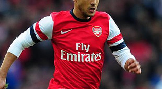 Theo Walcott, pictured, hopes Arsenal can pay back the faith showed by Arsene Wenger