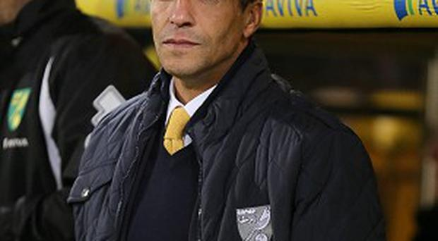 Chris Hughton is not worrying about the clubs around Norwich