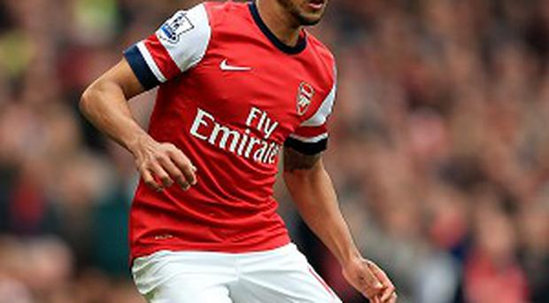 Theo Walcott insists his team-mates do not want to be part of an Arsenal team that miss out on Champions League