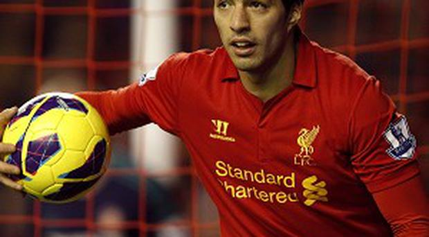 Luis Suarez will not try to force a move away from Liverpool