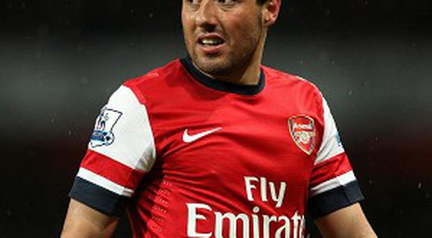 Santi Cazorla, pictured, is relishing playing with Mesut Ozil