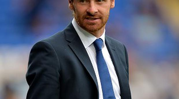 Andre Villas Boas felt Spurs fans could have done more to help the team