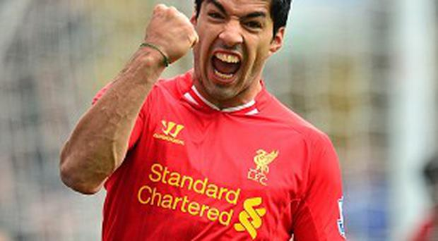 Luis Suarez, pictured, can help Liverpool qualify for the Champions League, according to Brendan Rodgers