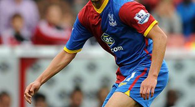 Adlene Guedioura sustained the injuries in Palace's game against West Brom