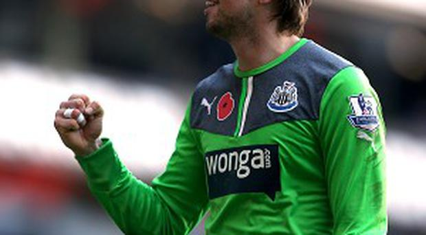 Tim Krul, pictured, kept Tottenham at bay after Loic Remy gave Newcastle the lead