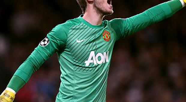 David De Gea has been in excellent form for Manchester United this term