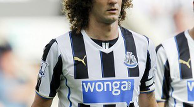Fabricio Coloccini wants to stay at Newcastle