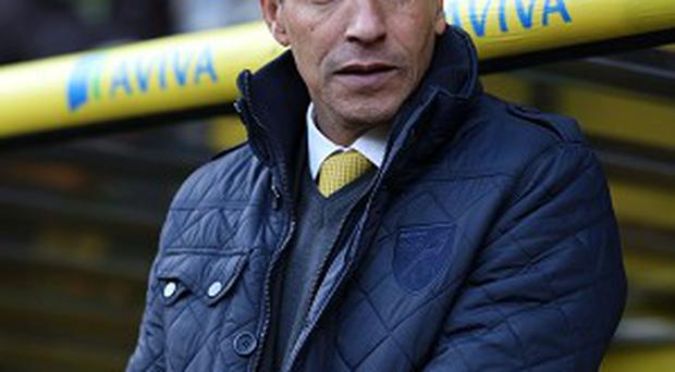 Norwich boss Chris Hughton, pictured, insists Wes Hoolahan is a key part of the squad