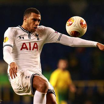 Tim Sherwood has issued a challenge to Etienne Capoue, pictured.