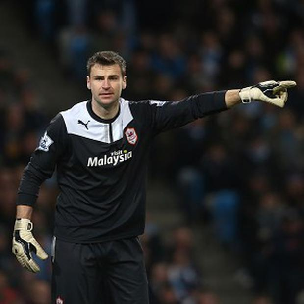 David Marshall has impressed in his first season in the Premier League