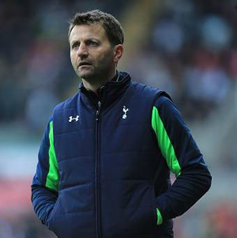 Tim Sherwood want players feigning injuries to be punished