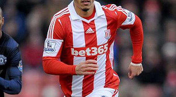 Mark Hughes is confident Peter Odemwingie will be a hit at Stoke