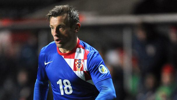 Ivica Olic is set to play for Croatia at the World Cup