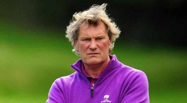 Glenn Hoddle is in the frame for the palace job