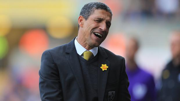 Chris Hughton has been replaced by Neil Adams.