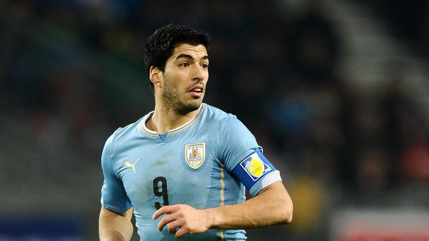 Luis Suarez, pictured, underwent a minor knee operation but should be fit for the World Cup