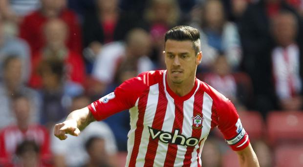 Jose Fonte believes Southampton can improve on last season, despite the changes to their squad in the summer