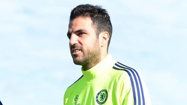 Chelsea's Cesc Fabregas will miss Spain's double-header through injury