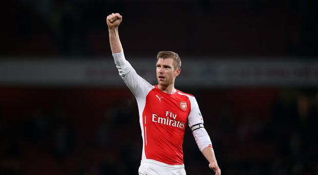 Arsenal defender Per Mertesacker, pictured, is confident new signing Gabriel Paulista will prove a sound purchase.