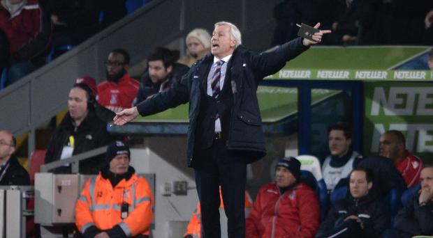 Alan Pardew's Crystal Palace took a point from his former employers Newcastle