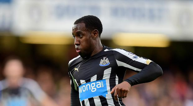 Newcastle midfielder Vurnon Anita, pictured, and utility man Ryan Taylor could be pressed into service as emergency defenders