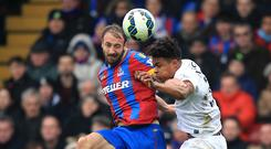 Crystal Palace manager Alan Pardew has praised Glenn Murray, left, for his recent impact