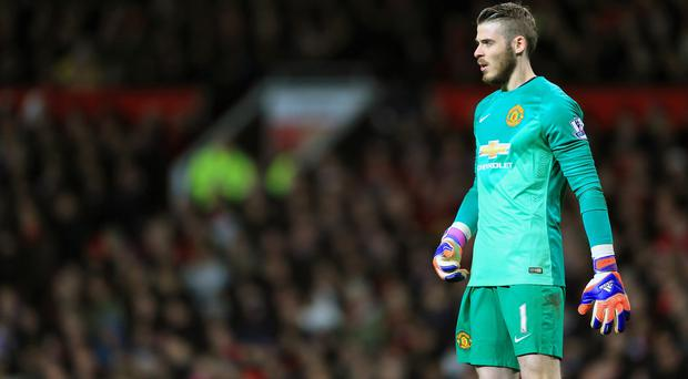 Manchester United boss Louis van Gaal says the club have offered David de Gea, pictured, 'a lot of money'