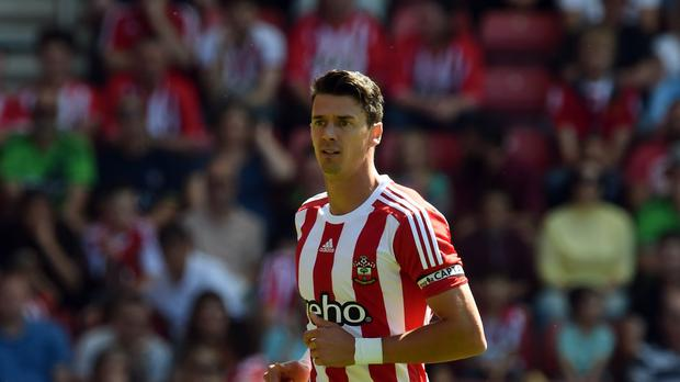 Jose Fonte, pictured, would like to see Virgil van Dijk at Southampton