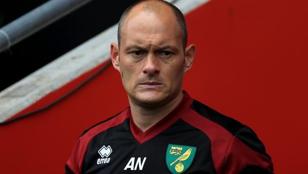 Alex Neil, pictured, was thrilled with Wes Hoolahan's performance