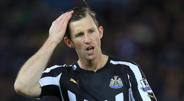 Newcastle's Mike Williamson has joined Wolves on a month's loan
