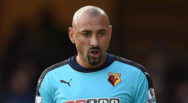 Watford goalkeeper Heurelho Gomes has warned his team-mates they cannot relax