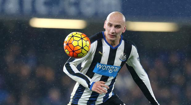 Jonjo Shelvey could captain Newcastle at Stoke in the absence of Fabricio Coloccini