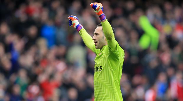 David Ospina is expected to replace the injured Petr Cech in goal for Arsenal