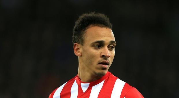 Peter Odemwingie is expected go feature for Bristol City this weekend