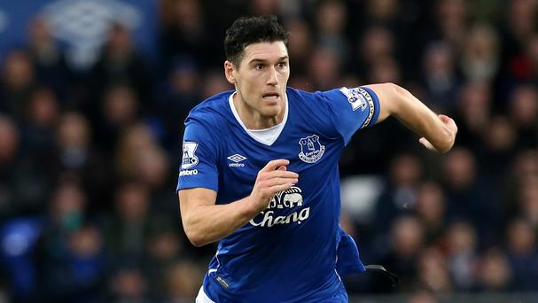 Gareth Barry has been a driving force in Everton's midfield this year