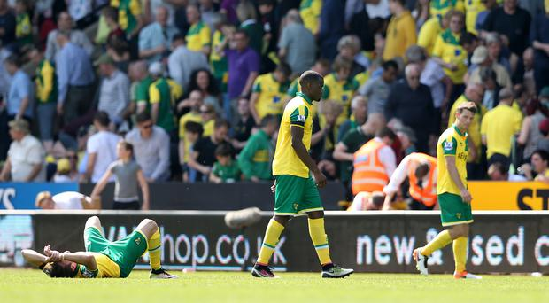 Norwich defender Sebastien Bassong, centre, is used to suffering relegation