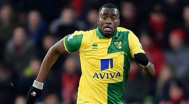 Norwich defender Sebastien Bassong is used to the feeling of relegation