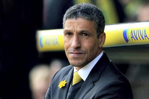 Brighton & Hove Albion manager Chris Hughton. Photo: Matthew Lewis/Getty Images