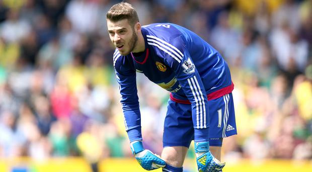 Manchester United goalkeeper David de Gea, pictured, feels the club