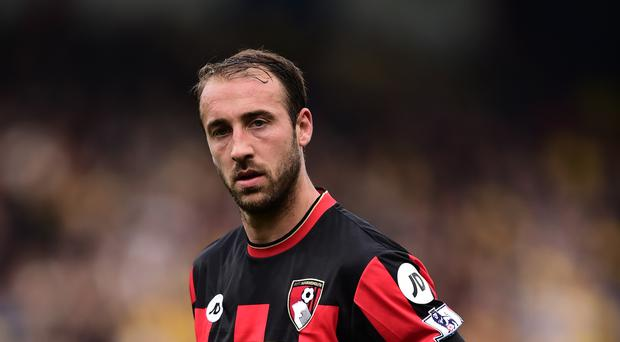 Glenn Murray is back with Brighton after a single season at Bournemouth