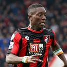 Max Gradel has signed a new deal at Bournemouth